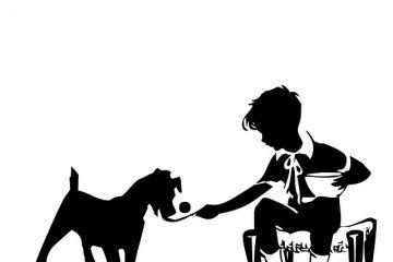 Une liste de mauvaises marques d'aliments pour chiens