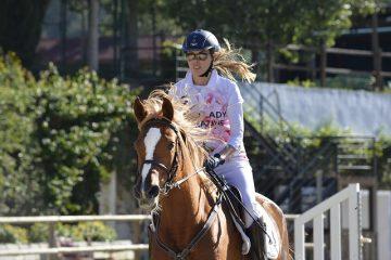 Comment commencer un cheval au-dessus des clôtures