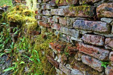 Brique commune par rapport à la brique de parement