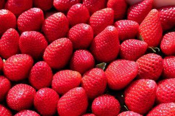 Aliments contenant des antihistaminiques