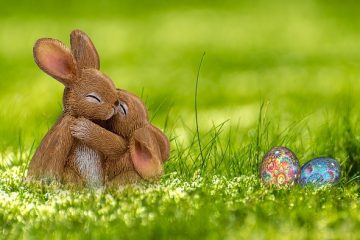 Comment faire des lapins gras de lapins