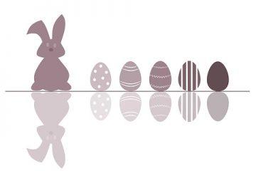 Comment déterminer l'âge d'un lapin sauvage