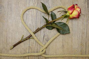 DIY Wedding Invitation Invitation Logiciel d'impression d'invitation de mariage