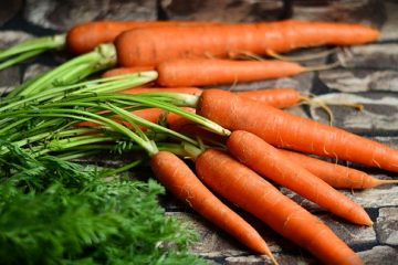 Comment congeler des carottes sèches et congelées