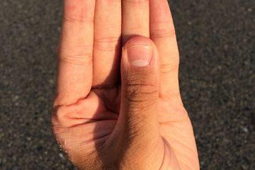 Les plus petits micro-ondes fabriqués