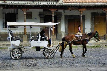 Plans de construction de charrettes à chevaux