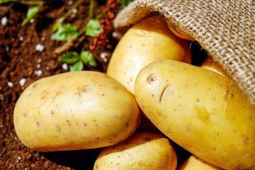 Comment réchauffer des pommes de terre gratinées au gratin