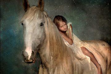 Comment élever un cheval de comté