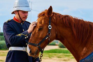 Les métiers de l'équitation dans l'armée