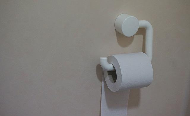 Comment Retirer Un Porte Papier Hygienique D Un Carrelage Mural