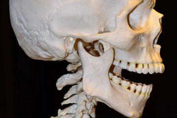 Comment augmenter la densité et la force de la charpente osseuse