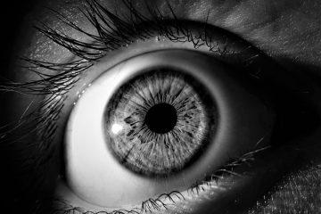 Comment traiter un œil gonflé par une piqûre d'insecte ?