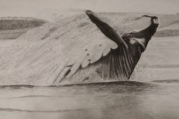 Comment fabriquer une baleine Mache Papier