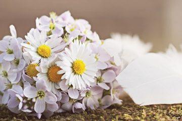 Comment faire un arrangement floral pour une arche nuptiale