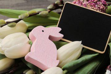 Fleurs comestibles pour lapins