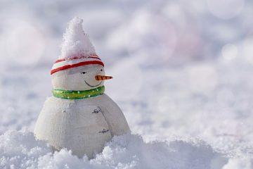 Idées de costumes de flocons de neige