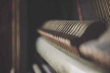 Instruments de musique pour les sons d'animaux, les sifflets et les effets sonores du corbeau