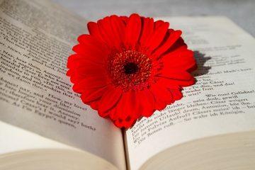 Avantages et inconvénients de l'étude de l'anglais