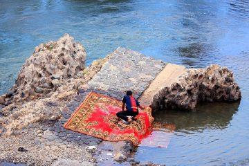 Nettoyeurs de tapis à usage intensif faits maison