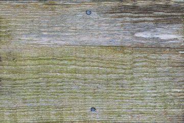 Comment poncer une table en bois