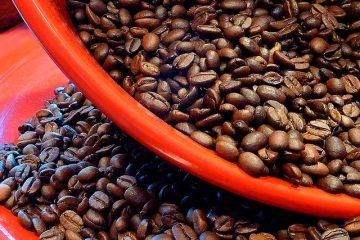 Respiration dans les semences en germination