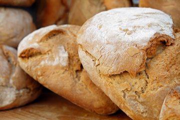 Différences entre la farine de maïs et la farine de maïs