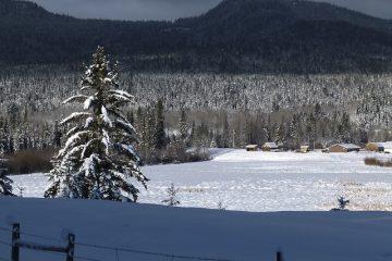 Centres de villégiature naturistes dans l'État de Washington