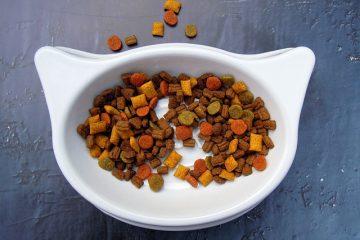 Quelle quantité de nourriture pour nourrir un chat ?