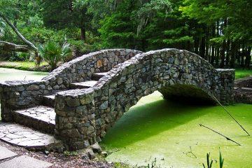 Comment enlever les algues d'une terrasse en bois