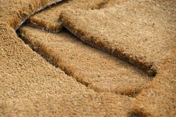 Comment utiliser le bicarbonate de soude pour tuer les puces sur les tapis.