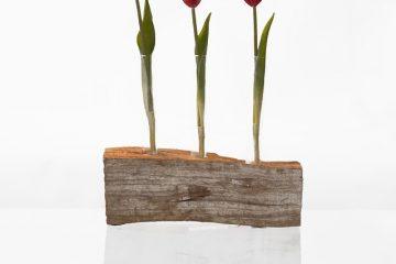 Type de feuillage pour la disposition des fleurs
