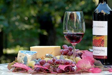 Comment organiser une fête du vin et du fromage
