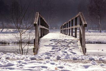 Comment réparer les fissures dans le bois de mon pont ?