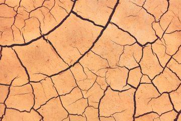 Comment traiter les démangeaisons féminines et la sécheresse.