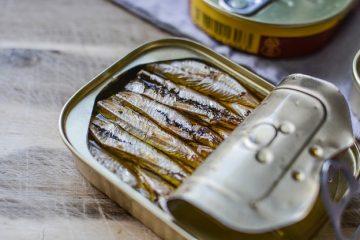 Différence entre sardines et pilchards