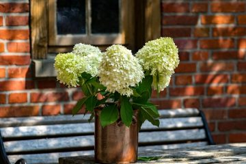 Quels sont les éléments de la table de communion ?