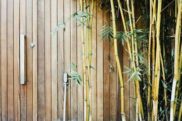 Comment construire une porte en bambou